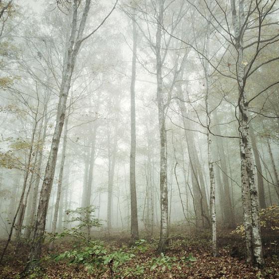 نور در عکاسی موبایل - آسمان ابری