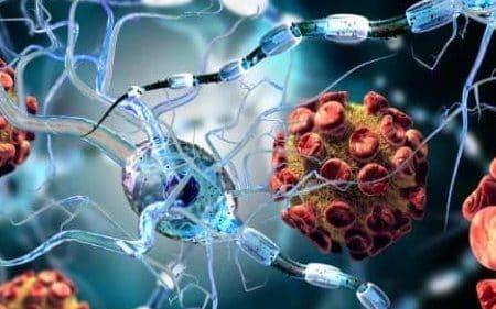 سلولهای بنیادی