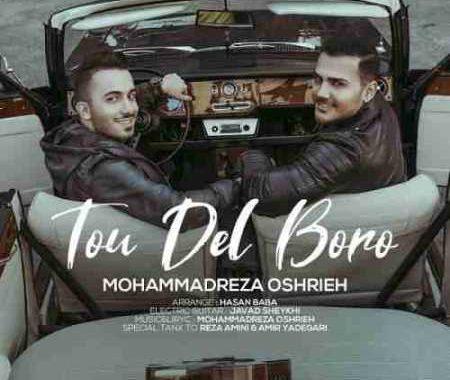 Mohammad-Reza-Oshrieh-Too-Del-Boro.jpg