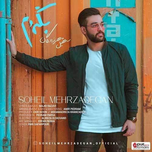 Soheil-Mehrzadegan-Begardam