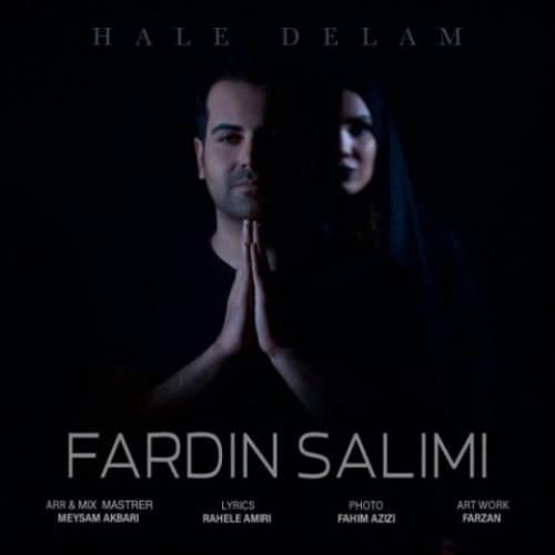 Fardin-Salimi-Hale-Delam