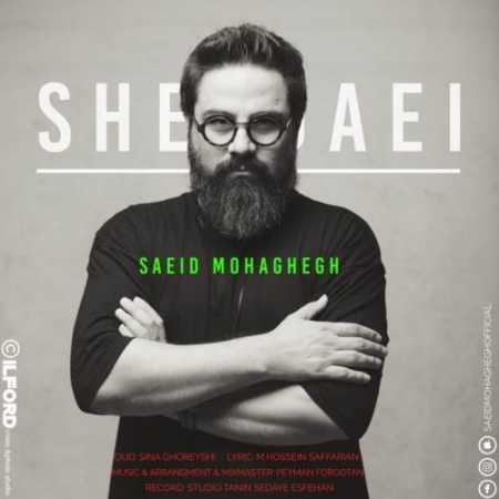 Saeid-Mohaghegh-Sheydaei.jpg